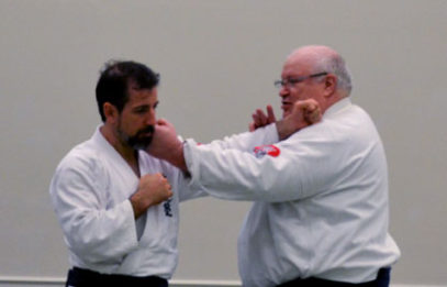 Aikido - Five Entries from a Jab