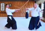 Aikido Sword - Two Sword - George Ledyard